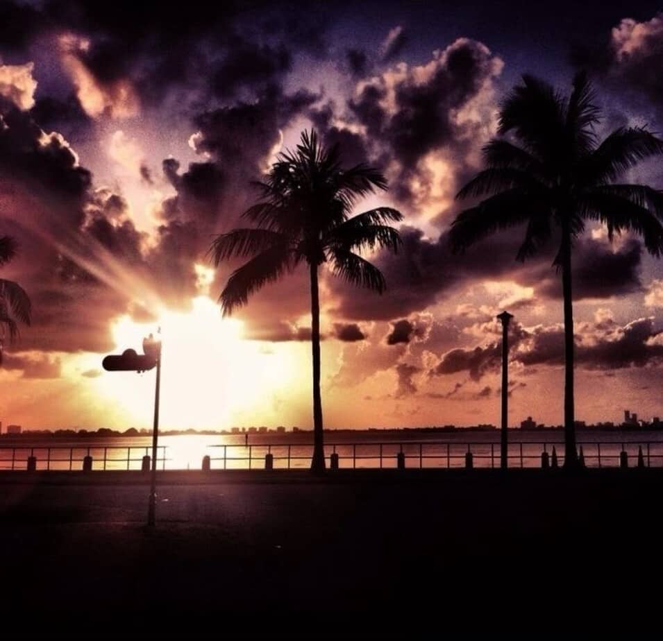 7 Things to Do at Night in Miami