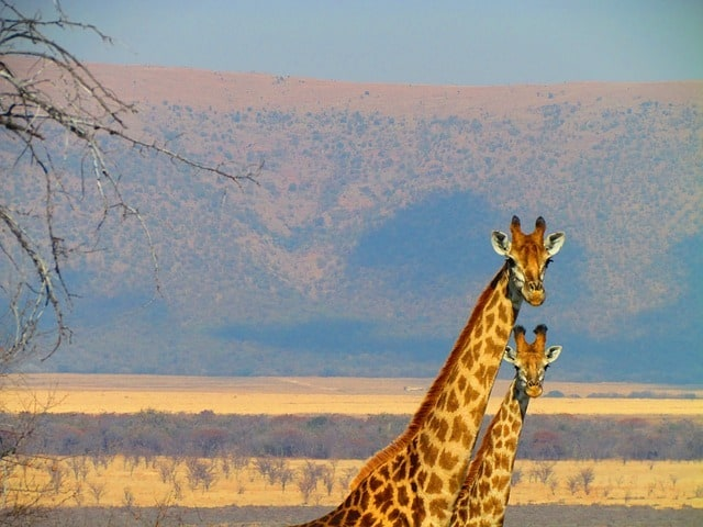 Top places to visit in South Africa
