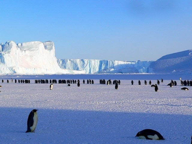 Antarctica Facts That Will Blow Your Mind