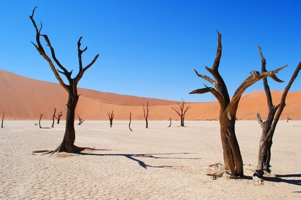 Tips for renting a car in Namibia
