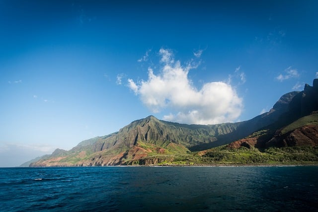 How Waiakea Compares to Other Forms of Water